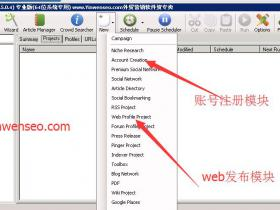 SEnuke Tng Pro 系列教程之:如何用SEnuke tng建设高DA外链
