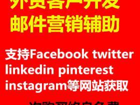 2021最新外贸客户开发软件 邮件营销 全球社交网站邮件搜刮 支持facebook instagram等