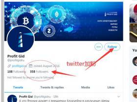 专业出售Twitter加粉点赞转发服务 推特购买粉丝买赞  快速涨粉