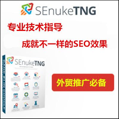 SEnuke TNG 专业版英文外链SEO优化软件SEnukeXCr包升级 包教会