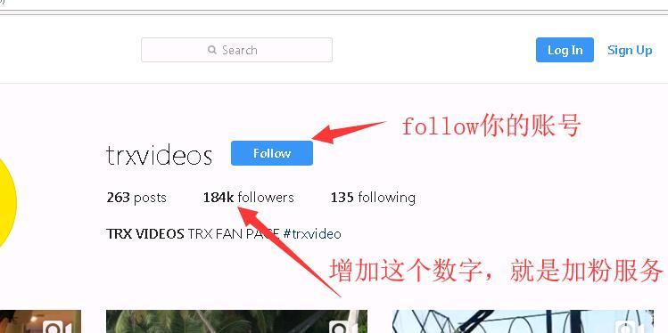 Instagram专业服务 100%成功 加粉涨follower 点赞like 刷ins浏览量评论等