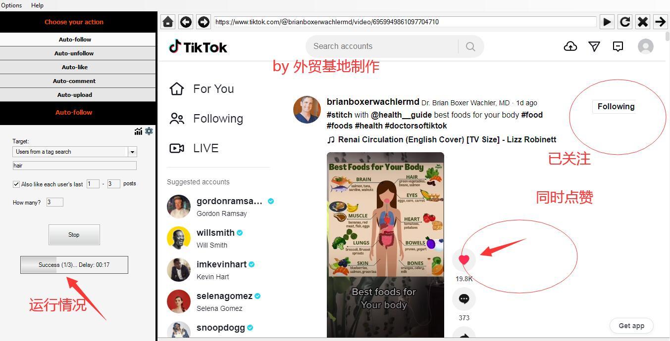 tiktok营销软件NinjaTok 加粉点 赞 中文图文教程